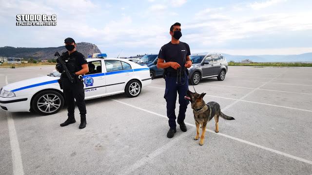 Αστυνομικοί σκύλοι ανιχνευτές στην Αργολίδα ξετρύπωσαν κάνναβη και λαθραία τσιγάρα