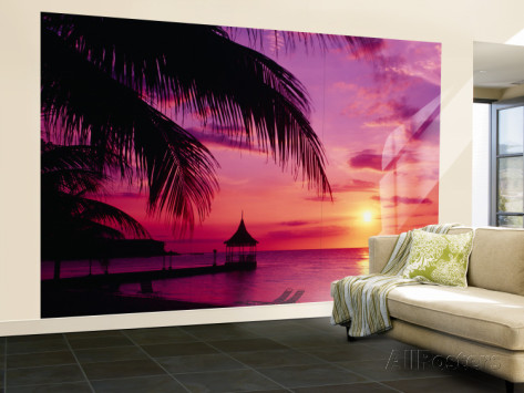 romantisk tapet solnedgång tropisk tapet palm hav