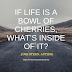 If life is a bowl of cherries,what's inside of it? -  JOSH STERN, AUTHOR