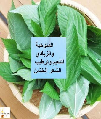 الملوخية والزبادي لتنعيم وترطيب الشعر الخشن