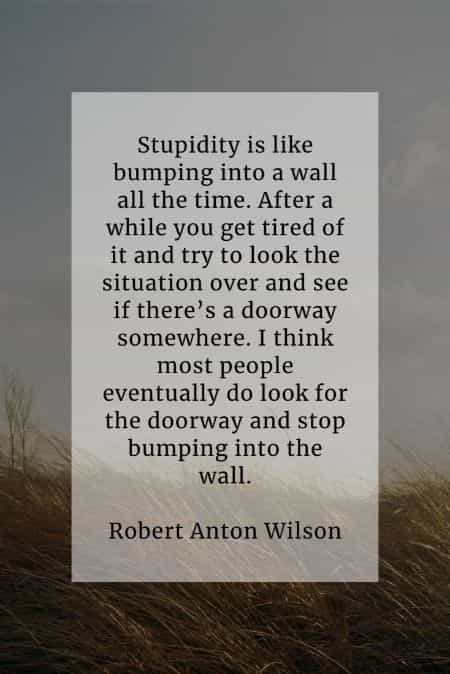 Stupid quotes that'll give cognizance of being foolish