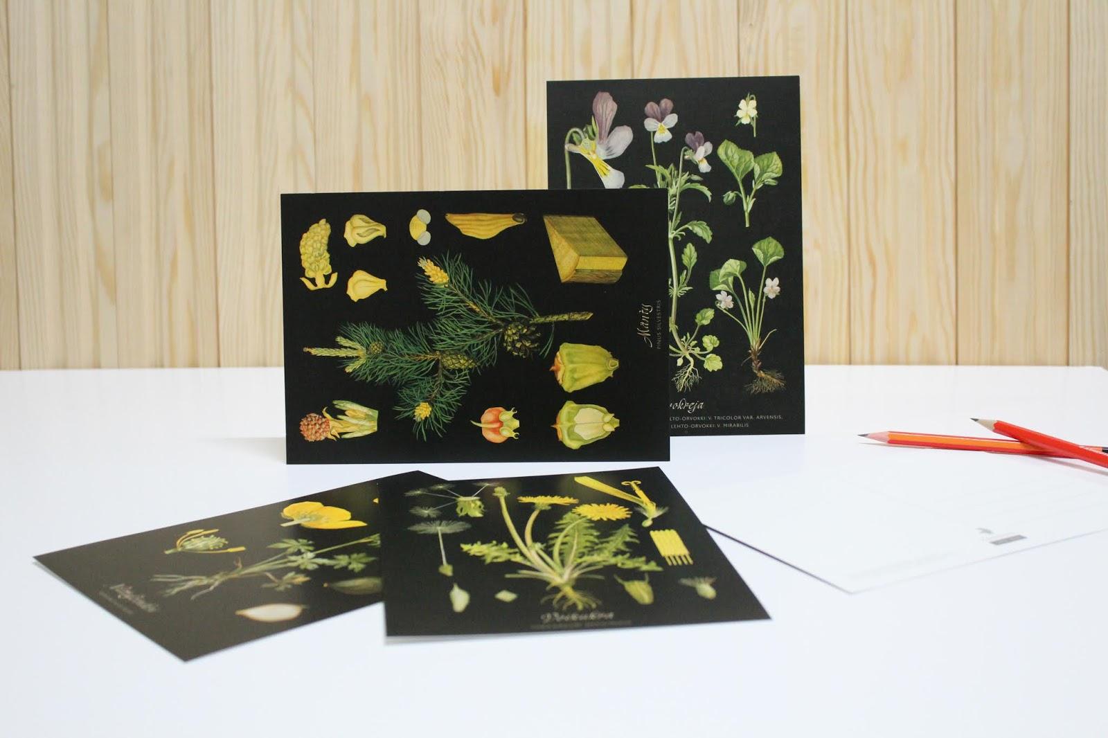 postikortit muokkaamaton kuva