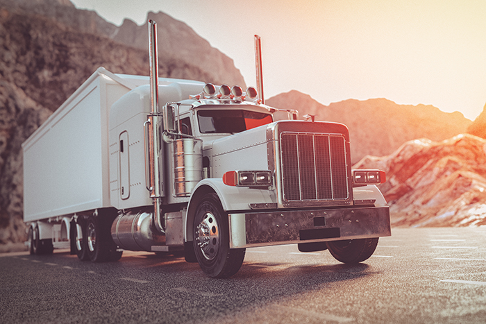 Fleet Trucking Business