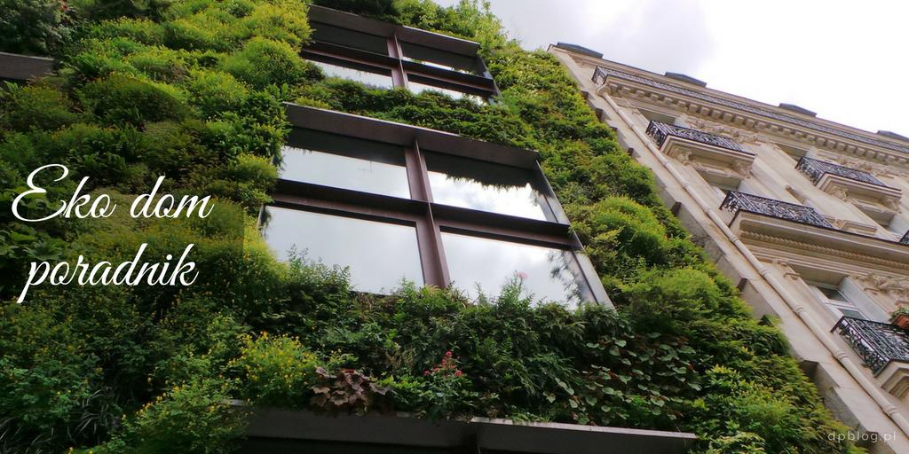 Jak sprawić by nasz dom był bardziej ekologiczny?