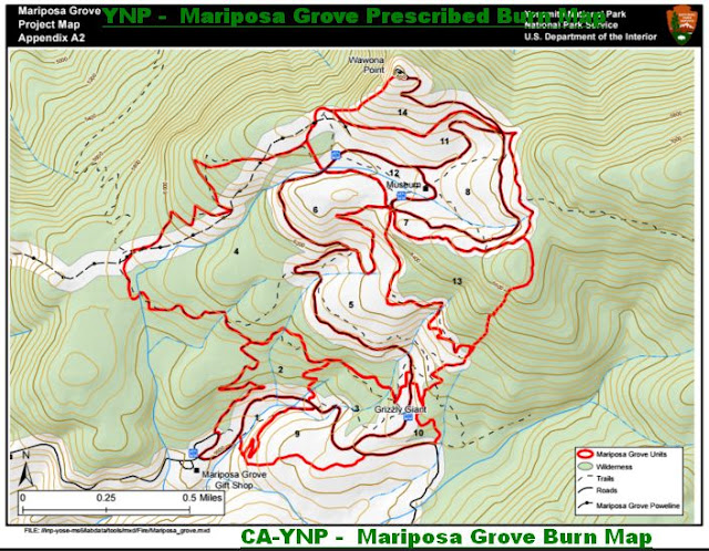 YNP -  Mariposa Grove Burn Map