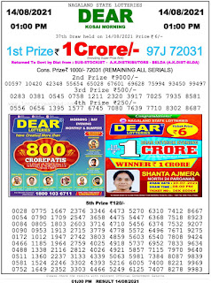 Nagaland State Lottery Result Today 14 8 21