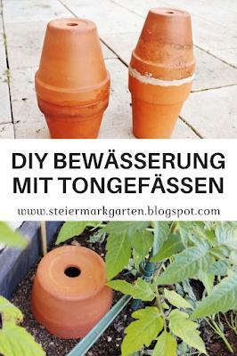DIY-Bewässerung-mit-Tongefäßen-Pin-Steiermarkgarten