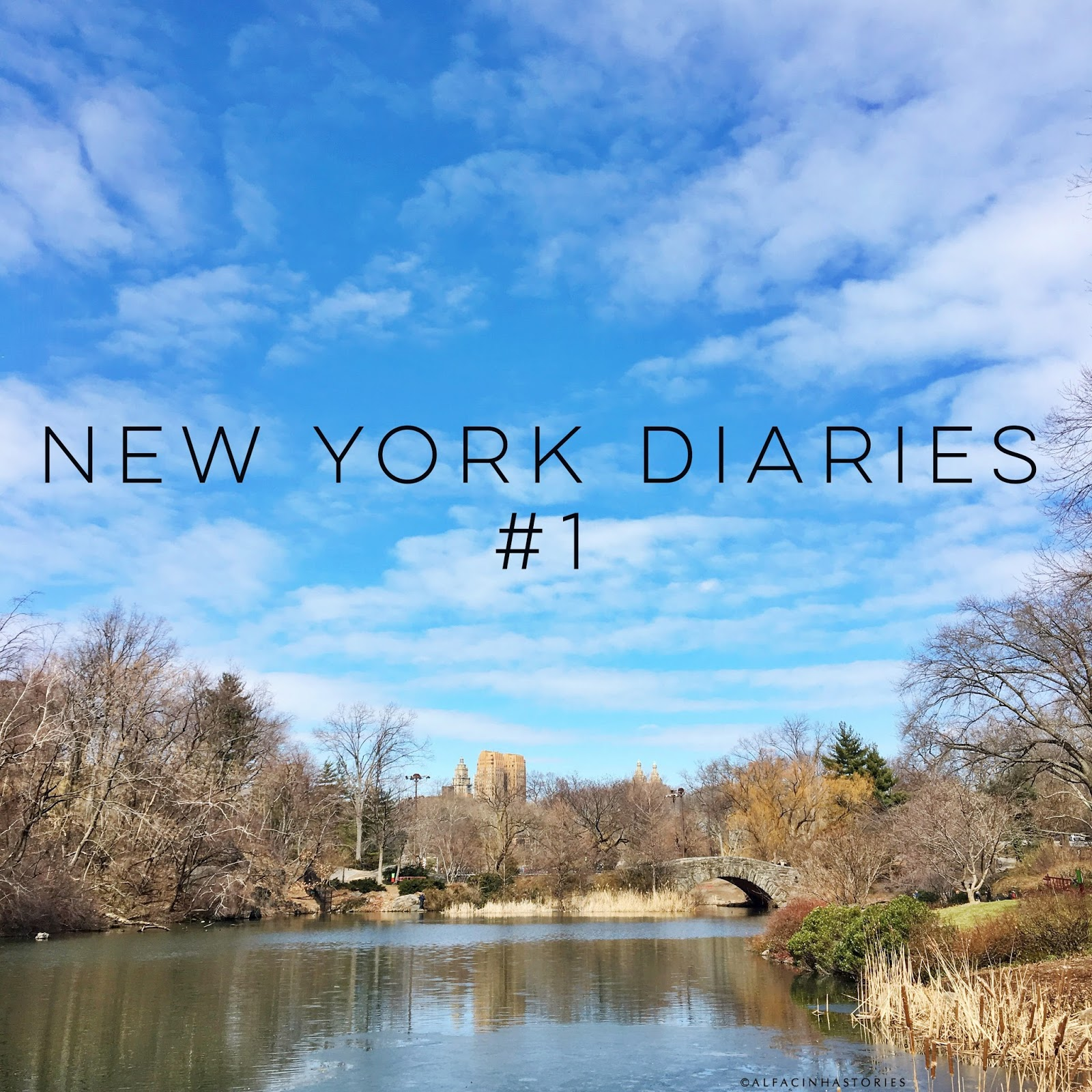 The New York Diaries #1