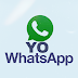 YO WhatsApp Official v8.25 Latest Update Bug's Fixed Mods Edition Version By Fouad Mokdad Download Now