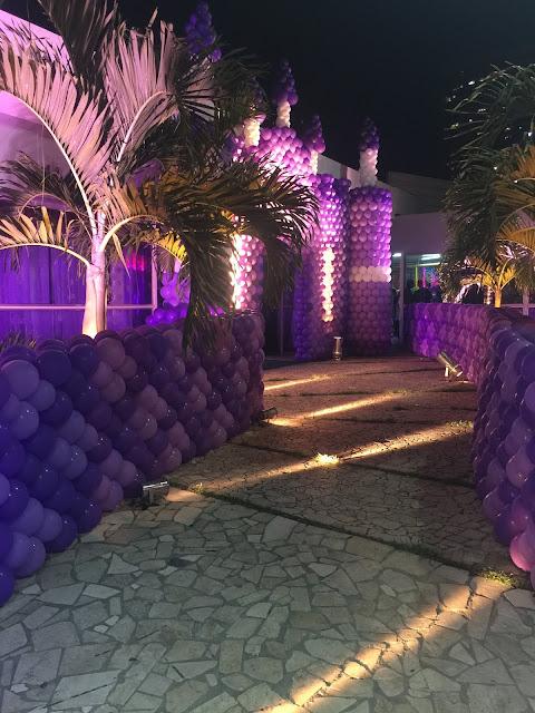 castelo de bolas princesa sofia