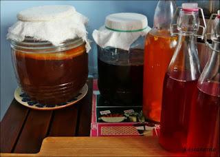 grzybek-herbaciany-zdrowy
