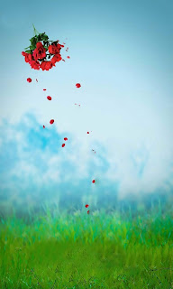 Falling Rose CB Background Free Stock