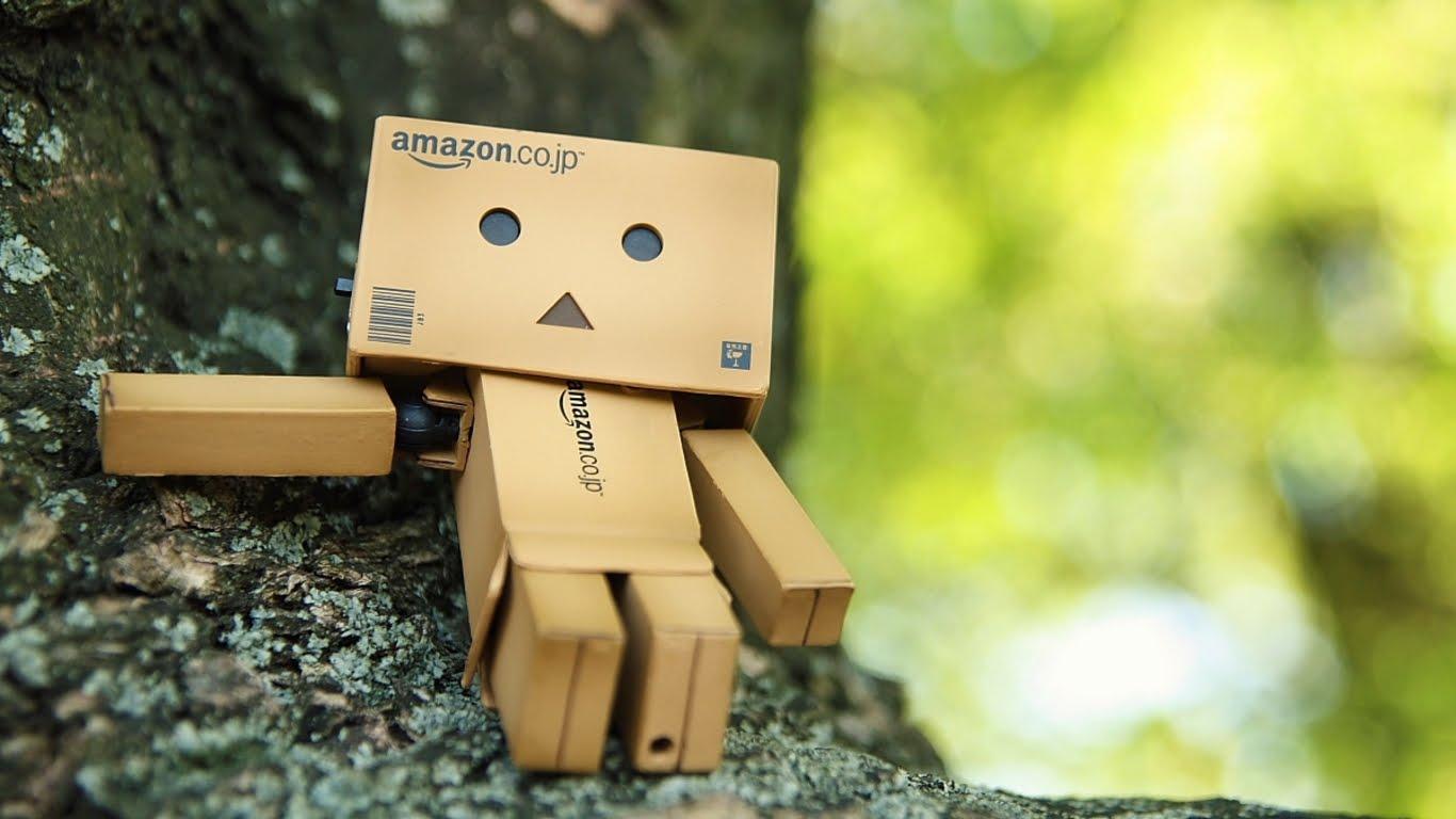 Cute Amazon Box Robot Wallpaper Gambar Wallpaper Danbo Hd Lucu Terbaru Resepseputarblog