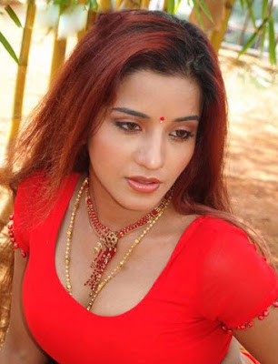 Bhojpuri Actress Monalisa photos