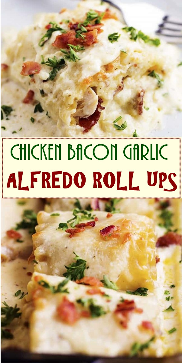 CHICKEN BACON GARLIC ALFREDO ROLL UPS #chickenrecipes