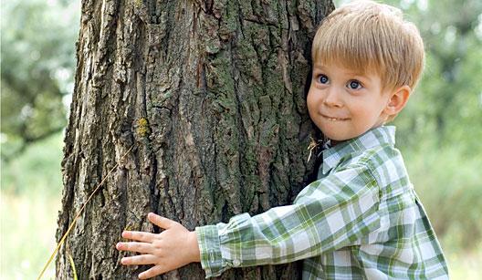 Resultado de imagem para abraçar árvores