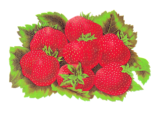 fruit strawberry digital download image