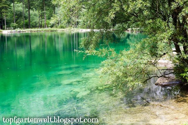 Seen im Bluntautal | Kinderwagenwanderung | Golling - Blog Topfgartenwelt