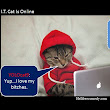 I.T. Cat Is Online ~ Hellfreecomedy