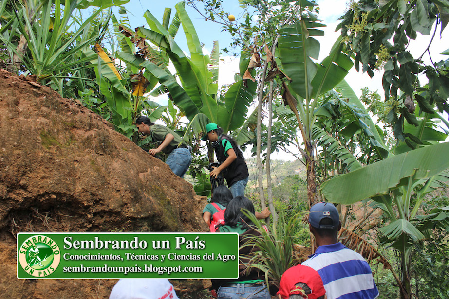 zona agrourbana de Caracas