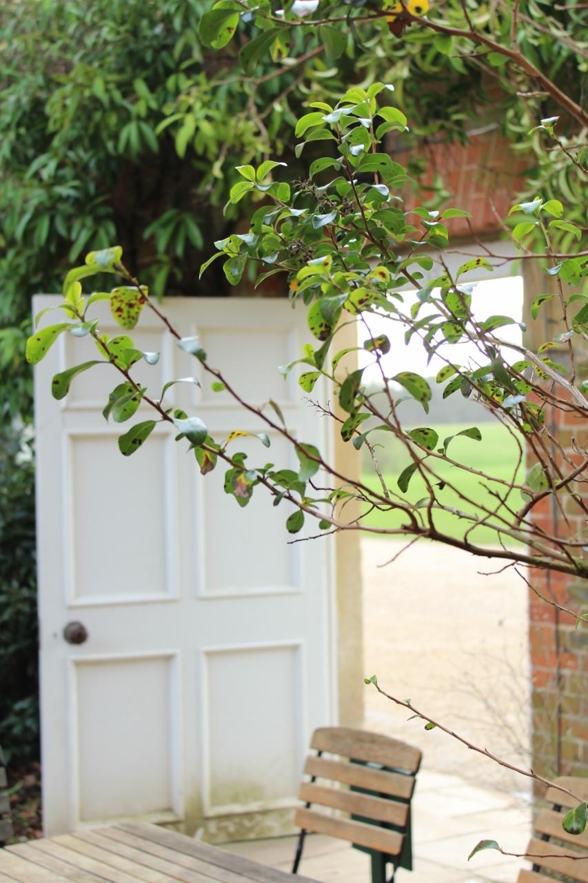 Gardens at Basildon Park