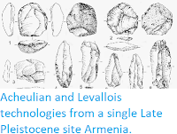 http://sciencythoughts.blogspot.co.uk/2014/10/acheulian-and-levallois-technologies.html