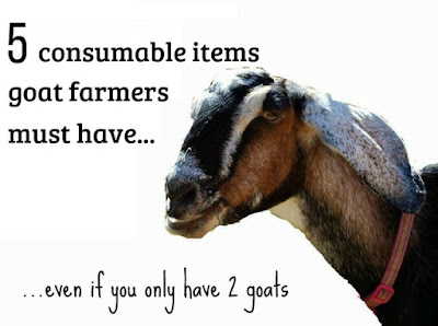 If you're a goat farmer - even if you only have 2 goats - you need these five items to keep them healthy and happy.