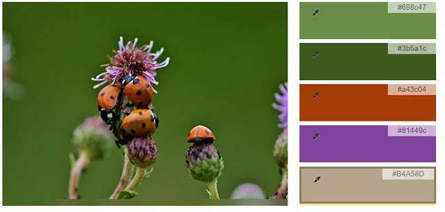 ladybug on thistle color palette of two greens, red, purple, and beige