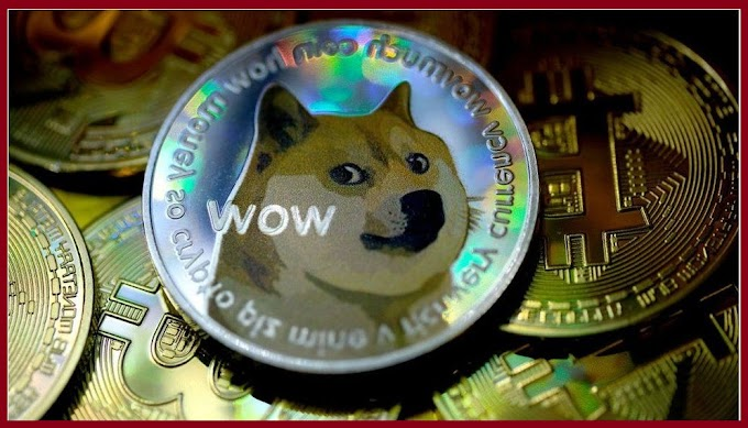 Investing in Dogecoin - everything you need to know worldfree4u.site