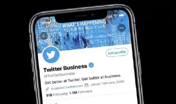 Twitter Professional Profiles to Help Businesses Gather New Clients