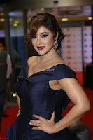 Payal Ghosh aka Harika in Dark Blue Deep Neck Sleeveless Gown at 64th Jio Filmfare Awards South 2017 ~  Exclusive 066.JPG