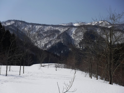 平沢から眺めている北尾根の風景