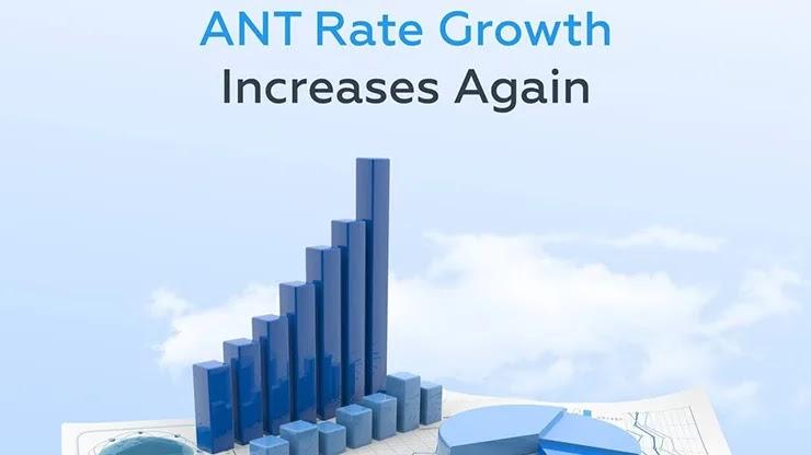 Отчет от Antares Trade