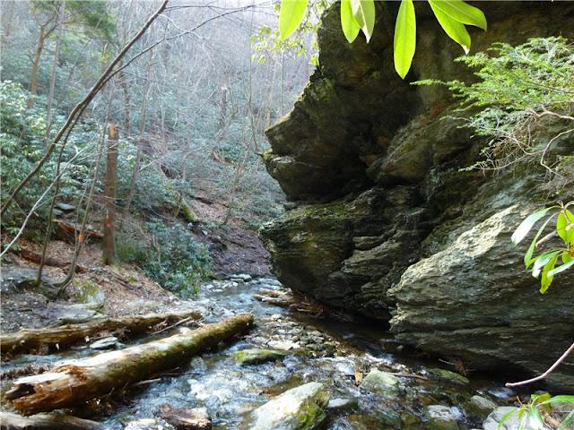 Kelly S Run Nature Preserve