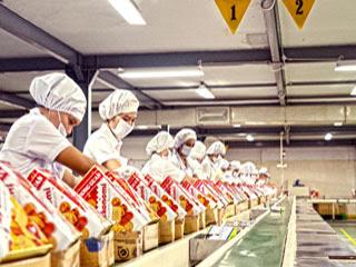 Lowongan Kerja : DRIVER, Supervisor Produksi, IT-Support SAP Staf Min SMA SMK D3 S1 PT Monde Mahkota Biscuit Membutuhkan Tenaga Baru Besar-Besaran Seluruh Indonesia