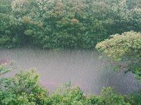 Lima Tips Menjaga Kesehatan Di Saat Musim Hujan Tiba