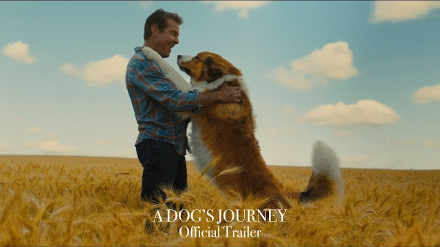 Film A dogs Journey