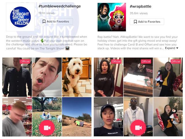 tiktok Hashtag challenges