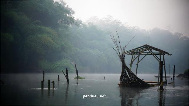 Konservasi Ikan Badher Bang Sungai Brantas Tawangrejo, Binangun