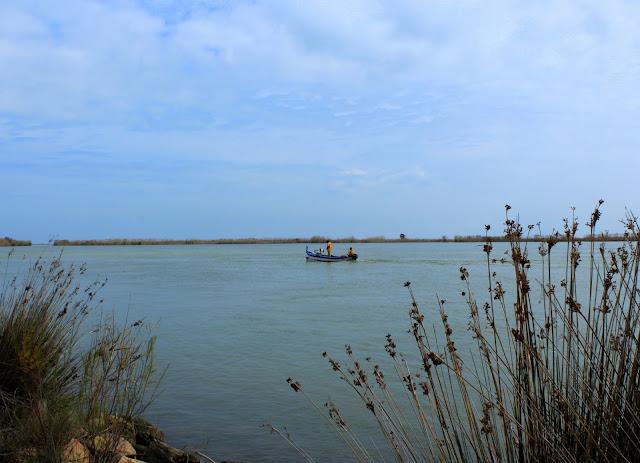 Desembocadura del río Ebro.