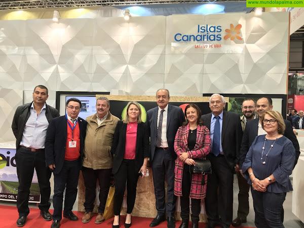 El Gobierno de Canarias promueve la participación de las empresas hortofrutícolas de las islas en la feria internacional Fruit Attraction