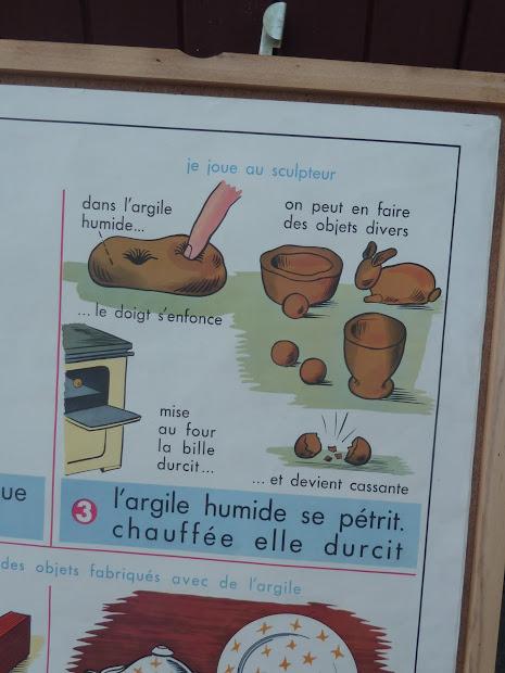 Vintage French Posters Botany Animals Anatomy World