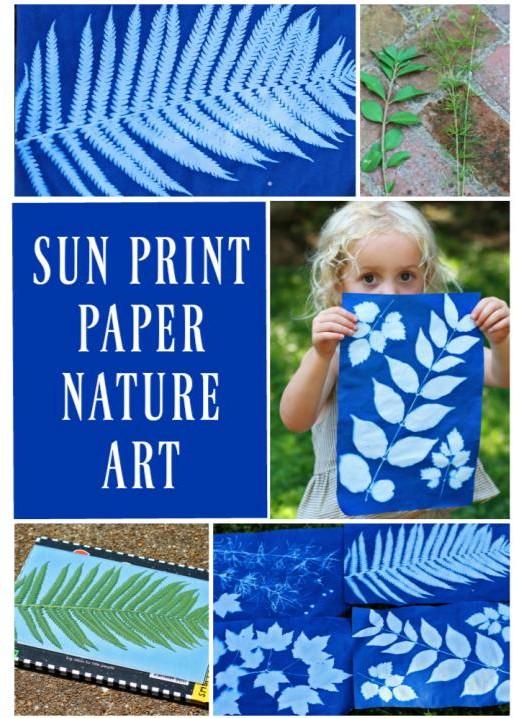 Create sunprint nature art using found materials