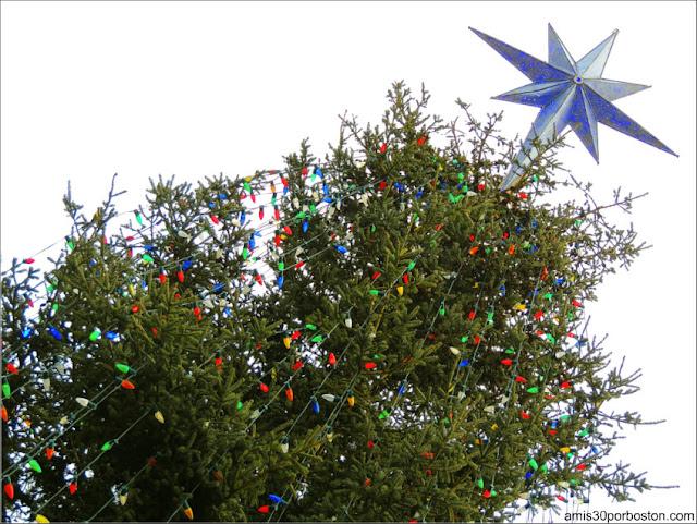 El Árbol de Navidad del Boston Common