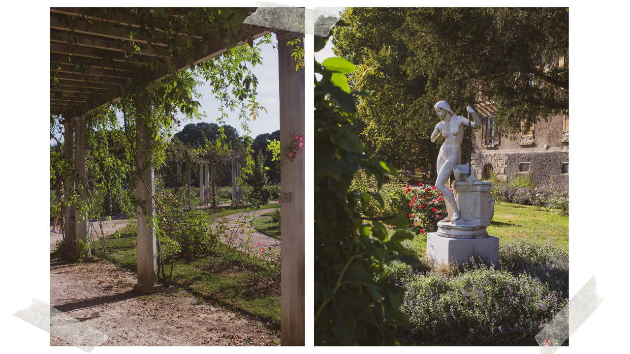 Two images of the rose garden in Parc de la Tête d'Or