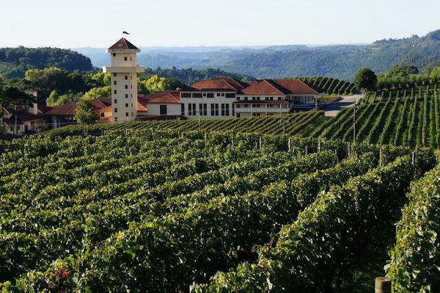 Vinícola Miolo em Bento Gonçalves: conheça as atrações oferecidas pela vinícola no Vale dos Vinhedos