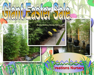Bamboo creations victoria are having a giant 2018 easter bamboo sale
