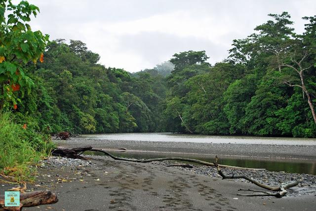 Parque Nacional de Corcovado, Costa Rica
