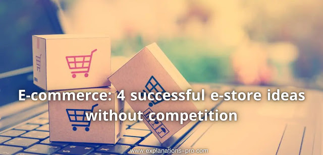 E-commerce: 4 successful e-store ideas without competition