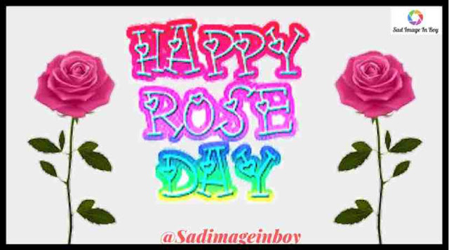 Rose Day Images | images of rose, rose hd wallpaper, roseday, image of rose, love rose image, beautiful pictures of roses